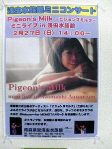 050228_pigeon2